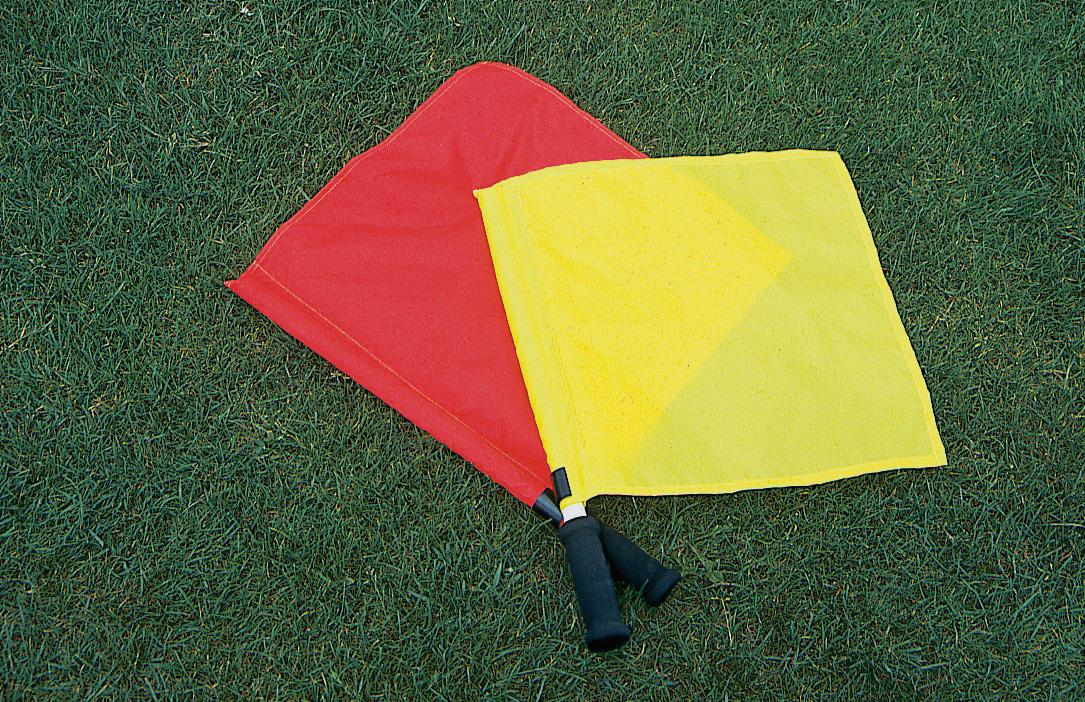 drapeaux_juge.jpg